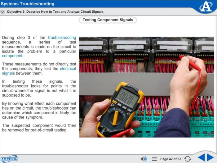 Electrical Motor Control eLearning Course Multimedia Screen Capture - Systems Troubleshooting