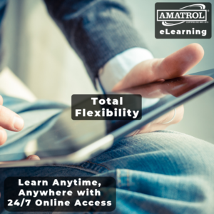 Amatrol eLearning: Total Flexibility Infographic