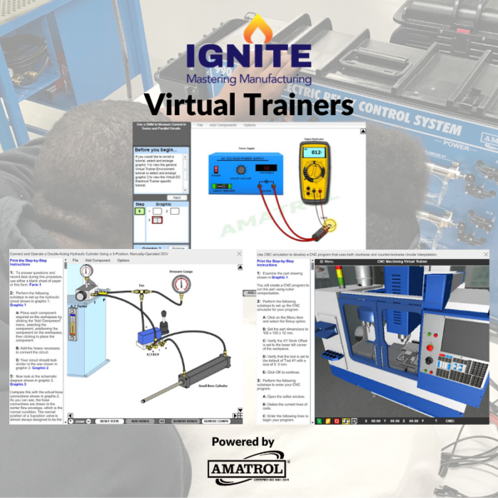 IGNITE - Virtual Trainers Infographic