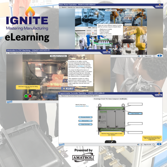 IGNITE - eLearning Infographic